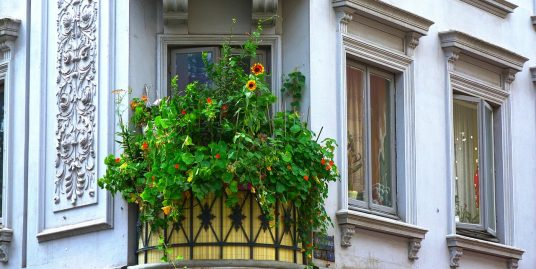 balkon naslovna sigma nekretnine zrenjanin