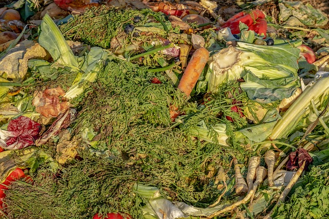 kompostiranje zeleni sloj sigma nekretnine zrenjanin